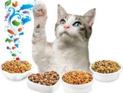 Котешки храни