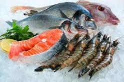 Охладена риба