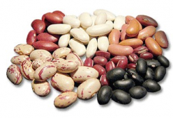 Варива-зърнени