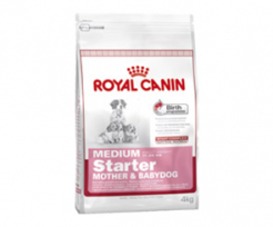 ROYAL CANIN MEDIUM STARTER 4кг