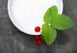 Любопитни факти за млякото